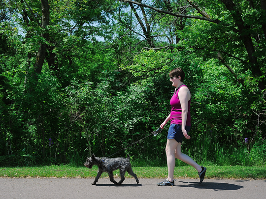 """Holly Kelly, of Sioux Falls, walks her dog, Henry, on the bike trail along the Big Sioux River in Riverdale Park on Wednesday, May 27, 2015, in Sioux Falls. The city of Sioux Falls is installing 24 dog waste stations along the bike trail and in public parks. """"I'm really glad about it,"""" Kelly said about the dog waste stations, """"I think it will make the trails cleaner."""" Kelly said she walks Henry on the bike trail most days in the Summer when it's nice out."""