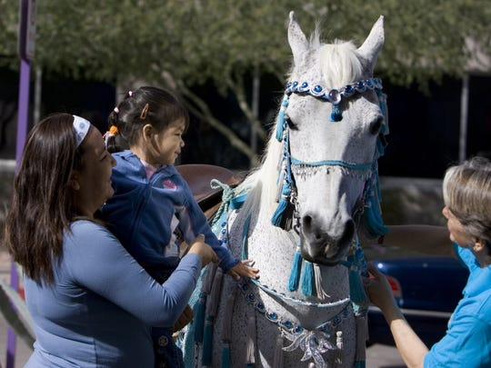 Meet-an-Arabian is part of the special events for kids