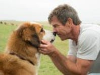 Private Screening of...A Dog's Purpose