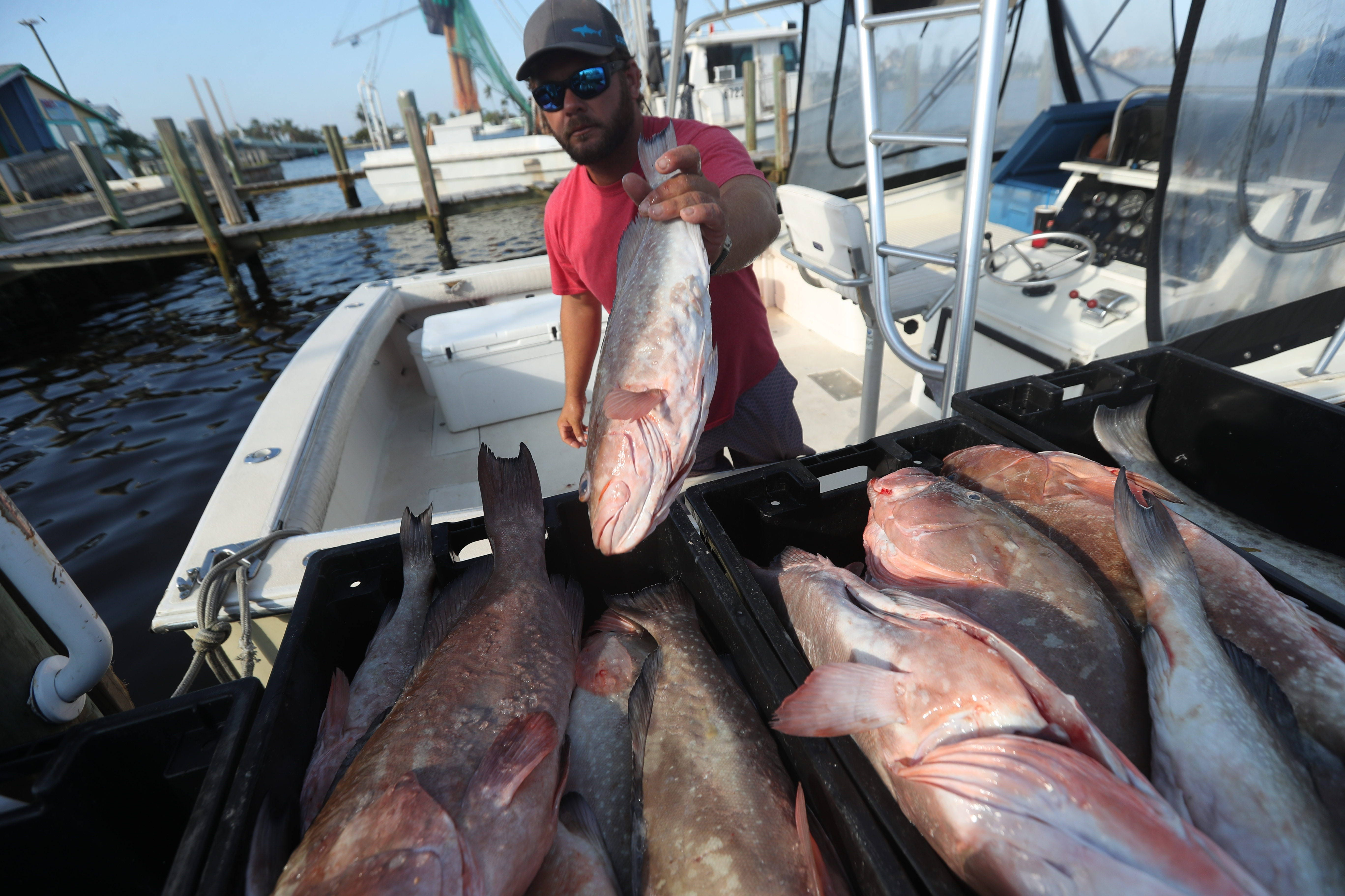 Study: Seafood Doesn't Expose You to THAT Much Mercury forecasting