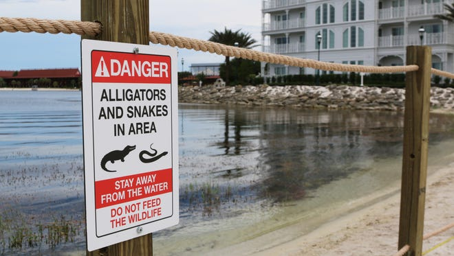 FILE - In this Friday, June, 17, 2016 file photo released by Walt Disney World Resort, a new sign is seen posted on a beach outside a hotel at a Walt Disney World resort in Lake Buena Vista, Fla., after a 2-year-old Nebraska boy killed by an alligator at Disney World.  Matt Graves, the father of the toddler killed by an alligator at Disney on June 14, told rescue officials two alligators were involved in the attack, according to emails from the Reedy Creek Fire Department.
