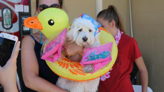 The second annual Doggy Swim Day will be Sept. 17 at the Fort Bliss Community Pool.