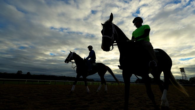 Horses and exercise riders training on the track  prior to the 149th running of the Belmont Stakes at Belmont Park in Elmont, N. Y.