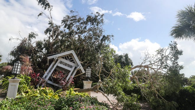 A giant tree at the entrance of Case Ybel Resort  blocked the road. Sanibel Island came through Hurricane Irma far better than was expected. They have trees down, now power and some flooding, but residents say that's better than the 15 feet of water the island was supposed to get.