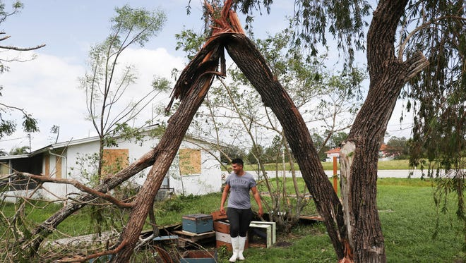 A Lehigh Acres resident cleans up his yard Monday 9/11/2017 after Hurricane Irma plowed through the state on Sunday.
