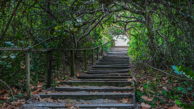 Tom Claud photographed this stairway, which leads from the beach back to the parking lot at Hobe Sound National Wildlife Refuge in Hobe Sound.