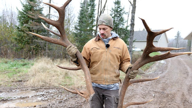 Rick Ewert holds up a pair of elk antlers at Hemlock Hills Trophy Ranch in Medford.
