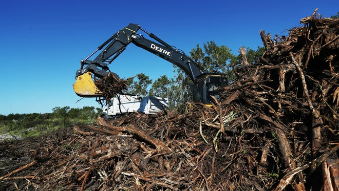 """Cleared foliage is trucked out of the J.N. """"Ding"""" Darling Wildlife Bailey Tract on Tuesday 3/6/2018. Parts of the tract are being restored to a fresh water wetland to help wildlife that subsists in that kind of habitat thrive including the Sanibel rice rat."""
