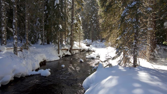 One of the highlights of the snowshoe route to Fey Lake is the snow-covered North Santiam River.