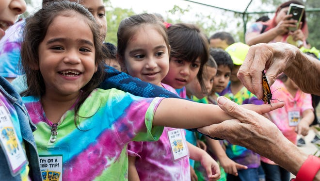 A young girl has a butterfly placed on her finger at the South Texas Botanical Gardens & Nature Center during the Birdiest Festival in America on Thursday, April 19, 2018.