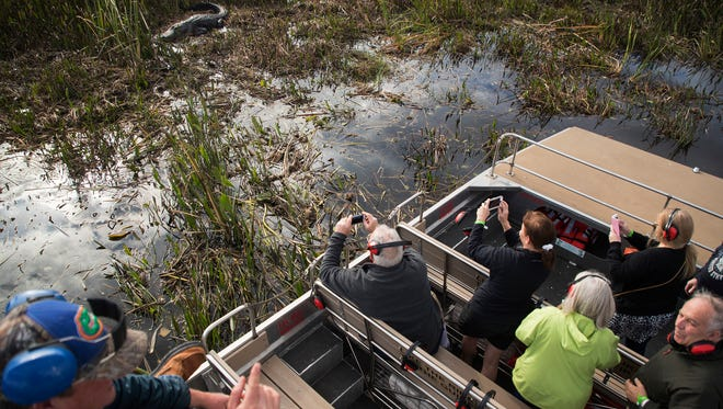 Wayne Corbitt, the captain/manager at Boggy Creek Airboat Rides on the south end of Lake Tohopekaliga takes a tour on an airboat ride in early February.