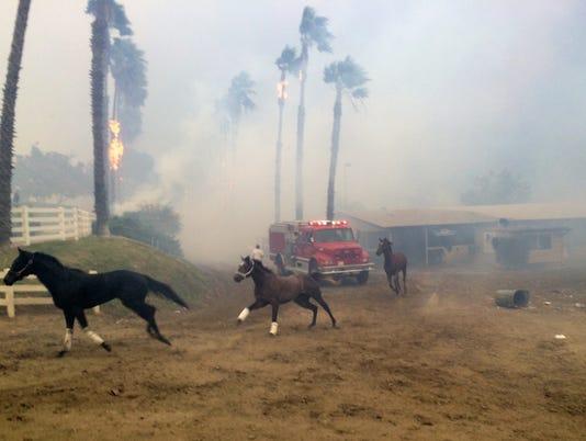 San Luis Rey Downs Fire