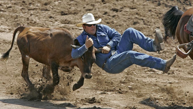 Steer wrestling is among the seven contest events at this weekend's Mid-Western Rodeo in Manawa.