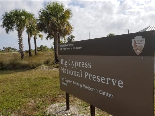 Three large brush fires in Big Cypress National Preserve have scorched more than 40,000 acres as of Tuesday, May 8, 2018, and destroyed half a dozen structures.