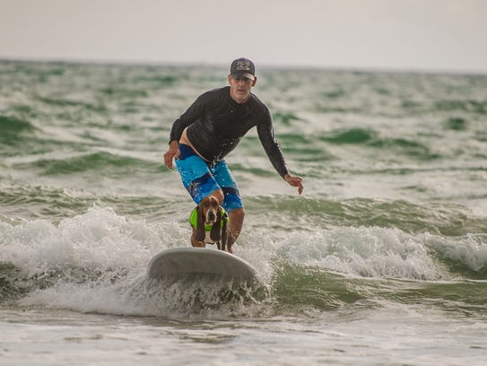 The East Coast Dog Surfing Association's St. Lucie
