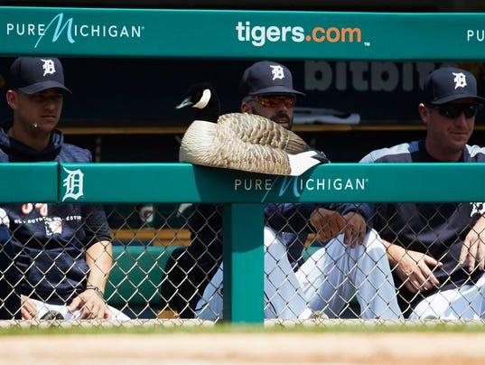 MLB: Los Angeles Angels at Detroit Tigers