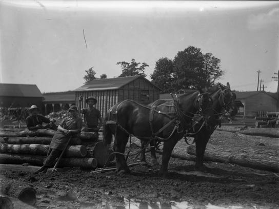 7. Sawmill workers