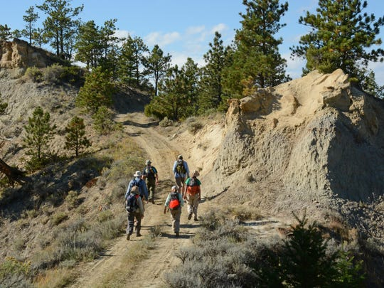Volunteers hike the roads of the Cow Creek Wilderness Study Area on Sept. 21. As citizen science volunteers, they were surveying WSAs in the Upper Missouri Breaks National Monument for the Bureau of Land Management.