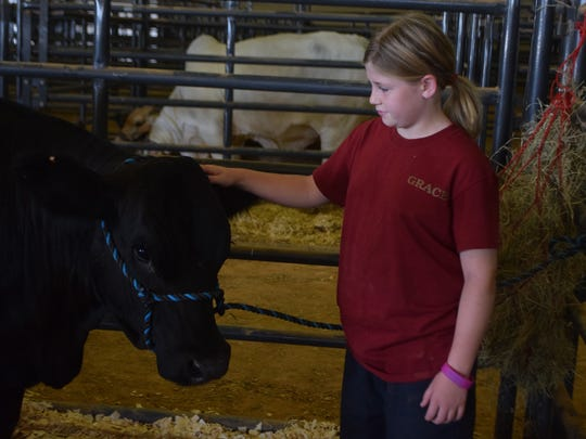 Julie Shuff of Colfax is participating in the 4-H Show at the Rapides Parish Fair for the first time. She is following in her sister Josey Shuff's footsteps.