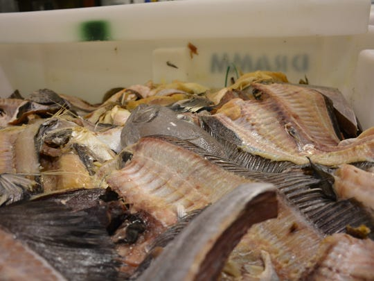 Fish scraps await processing at Dramm Corp.'s Algoma plant.