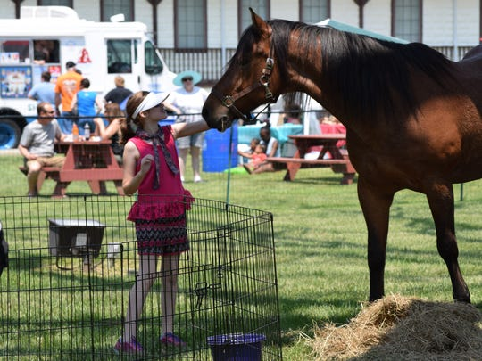 Chloe Weisgerber, 12, of Estell Manor pets Star at the Funny Farm Rescue petting zoo during the Richland Village Festival on Saturday, May 28. Photo/Jodi Streahle