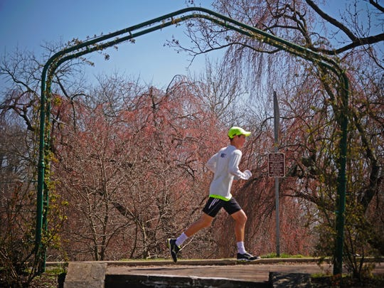 A runner past by Cherry trees in Brandywine Park that are starting to bloom.