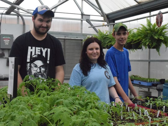 Union County High School students work in the greenhouse.