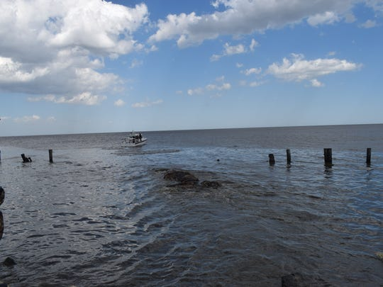 State Fish & Wildlife officials tow a dead whale off
