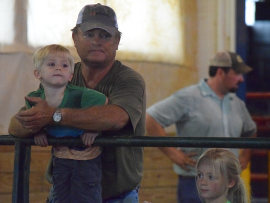 Dustin and Luke White watch to see which steer will