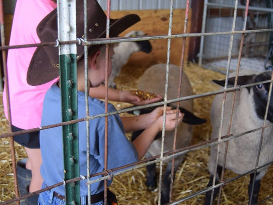Brody Engelhardt, 6, and his sister Averye feed their