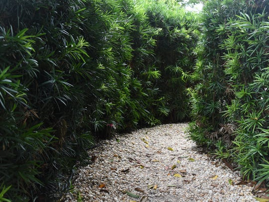 Get lost in a winding maze outside The Dali Museum.