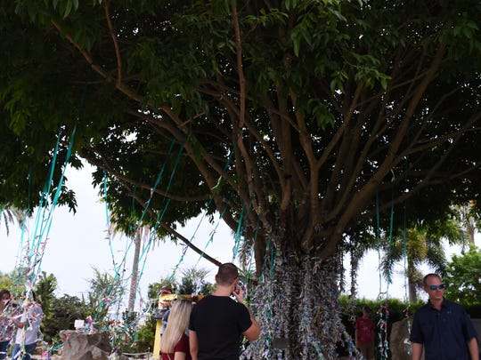 Visitors tie their guest bracelets with others hanging from a tree outside The Dali Museum after perusing through a collection of works by Salvador Dali.
