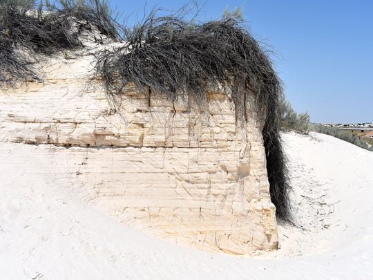 This sand formation sits on the Dune Life Nature Trail.