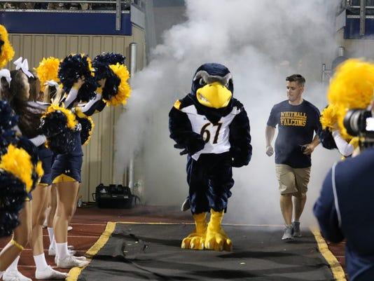 Flash the Falcon Whitnall's mascot