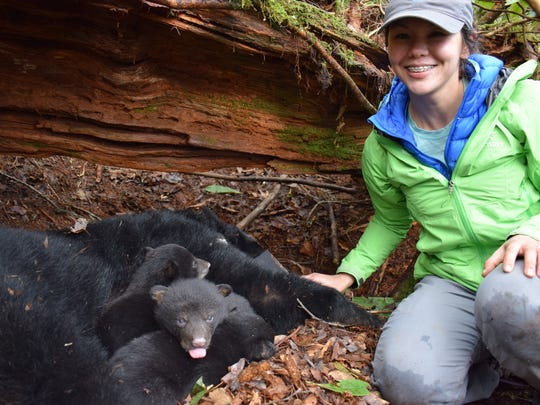 Jessica Giacomini poses with a black bear family in the Great Smoky Mountains. Giacomini has been studying bears in the Smokies as her master's project.