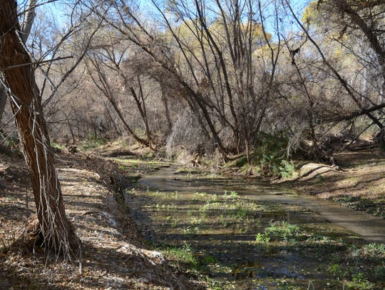 The Hassayampa River is always above ground in the