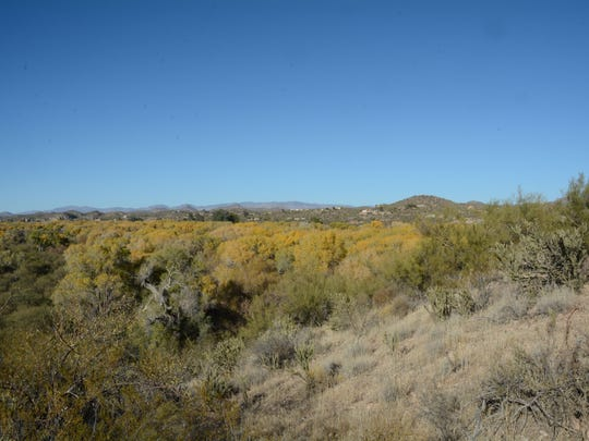 The view from the top of Lyke's Lookout at the Hassayampa River Preserve near Wickenburg.