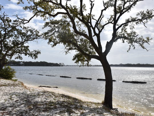 "Escambia County installed a ""living reef"" of oyster"