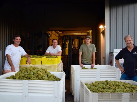 Mike Carduner of Working Dog (left), Mike Beneduce of Beneduce, Sean Comninos of William Heritage and Zeke Johnsen of Unionville stand among giant crates of Chardonnay grapes. Four Open Source Chardonnay wines are all distinctively Chardonnay, all different in their primary aromas, flavors and mouthfeel.
