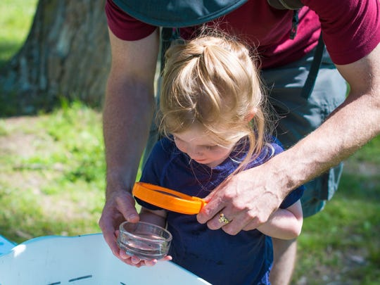 Jessica Featherstone's daughter, Skylar, looks at nature finds with her dad at Riveredge Nature Center.