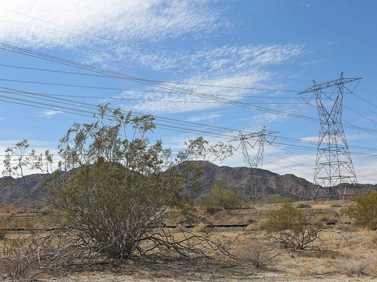 A creosote bush is dwarfed by large transmission lines that carry electricity along the Interstate 10 corridor east of California's Coachella Valley on Oct. 8, 2014.