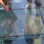 Feeling brave? Glass-bottom walkways