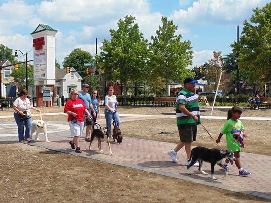 11 frm bark park (2).jpg