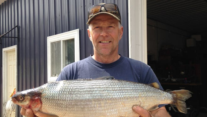 Michael Lemanski of Florence, Wisc., caught this new state-record cisco (lake herring) on Lake Ottawa in Iron County in the western Upper Peninsula.