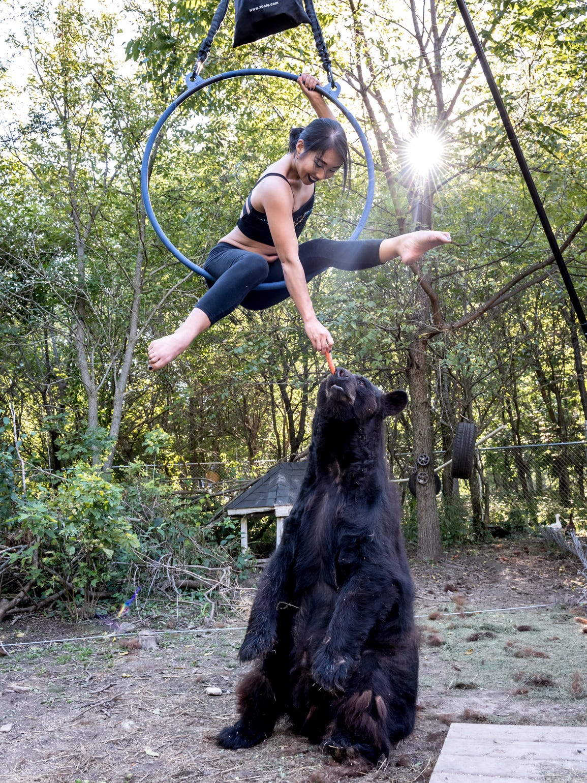 Joy Fisher hangs from a lyra as she feeds a bear.