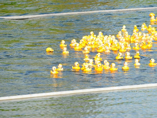 Rubber ducks race down the South River as part of the