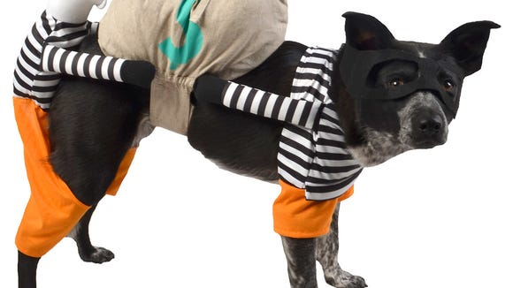 A pet costume from Target.