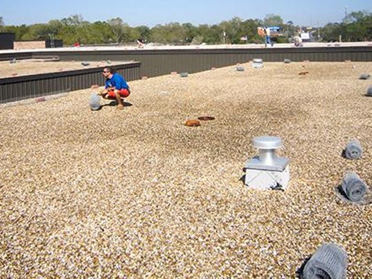 Thanks to Gulf Power, Audubon staff and volunteers avoided the backbreaking task of hauling screening and bricks on the roof and could focus on the big job of installing the chick protection.