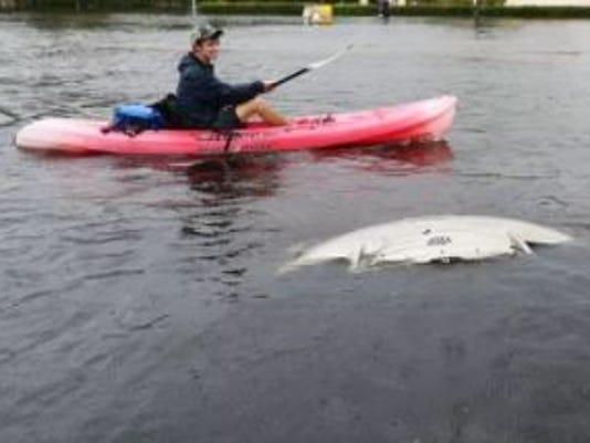 636395119203962317-kayakflood.JPG