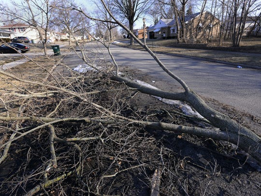 Limbs on Rossiter Place in Lansing await cleanup from the December ice storm on March 2.